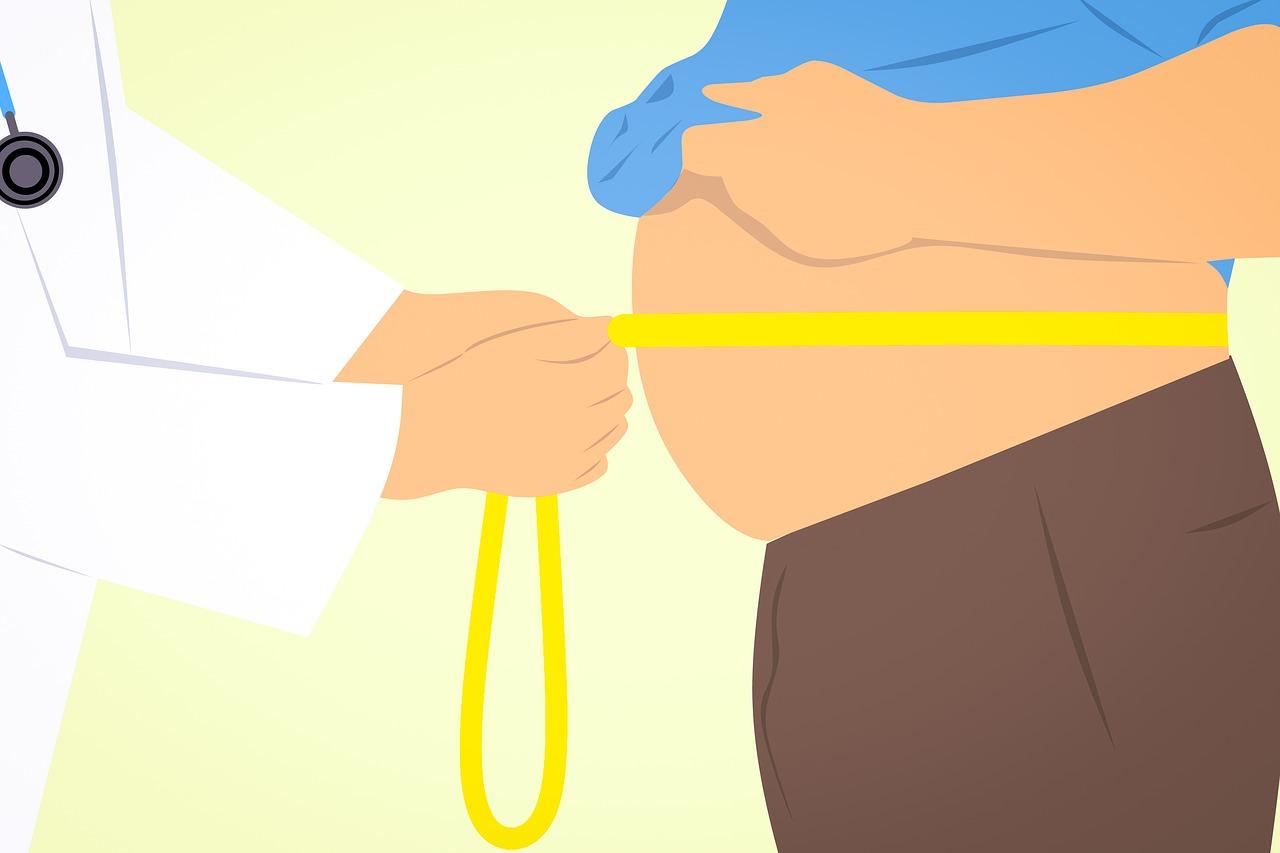 étude obésité OCDE